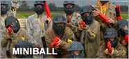 howto-miniball